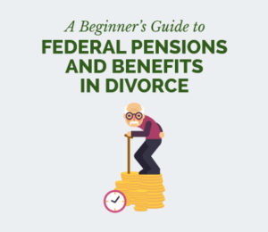 how to divide fers csrs and tsp in divorce
