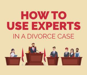 expert witness divorce